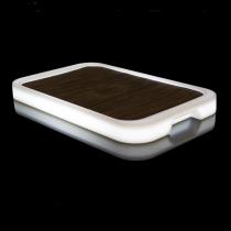 Bandeja led RGB recargable rectangular