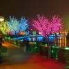 LED light bright tree, 250cm, 600 LEDs